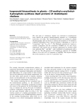Báo cáo khoa học: Isoprenoid biosynthesis in plants – 2C-methyl-D-erythritol4-phosphate synthase (IspC protein) of Arabidopsis thaliana