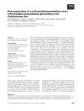 Báo cáo khoa học: Characterization of a b-N-acetylhexosaminidase and a b-N-acetylglucosaminidase/b-glucosidase from Cellulomonas fimi