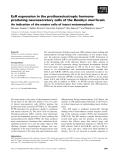 Báo cáo khoa học: EcR expression in the prothoracicotropic hormoneproducing neurosecretory cells of the Bombyx mori brain