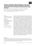 Báo cáo khoa học: Adenine nucleotides inhibit proliferation of the human lung adenocarcinoma cell line LXF-289 by activation of nuclear factor jB1 and mitogen-activated protein kinase pathways