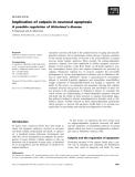 Báo cáo khoa học: Implication of calpain in neuronal apoptosis A possible regulation of Alzheimer's disease