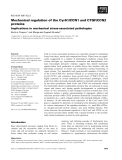 Báo cáo khoa học: Mechanical regulation of the Cyr61/CCN1 and CTGF/CCN2 proteins Implications in mechanical stress-associated pathologies