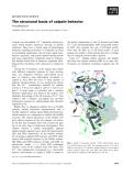Báo cáo khoa học: The structural basis of calpain behavior