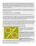 Tai Lieu Một số vấn đề về lạm phát ở việt nam