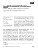 Báo cáo khoa học: SHP-1 dephosphorylates 3BP2 and potentially downregulates 3BP2-mediated T cell antigen receptor signaling