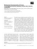 Báo cáo khoa học: Biochemical characterization of human 3-methylglutaconyl-CoA hydratase and its role in leucine metabolism