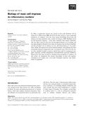 Báo cáo khoa học: Biology of mast cell tryptase An inflammatory mediator