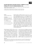 Báo cáo khoa học: Insulin-dependent phosphorylation of DPP IV in liver Evidence for a role of compartmentalized c-Src