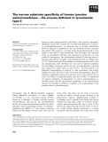 Báo cáo khoa học: The narrow substrate specificity of human tyrosine aminotransferase – the enzyme deficient in tyrosinemia type II