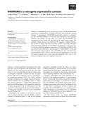 Báo cáo khoa học: NANOGP8 is a retrogene expressed in cancers