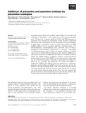 Báo cáo khoa học: Inhibition of polyamine and spermine oxidases by polyamine analogues