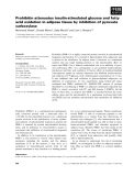 Báo cáo khoa học: Prohibitin attenuates insulin-stimulated glucose and fatty acid oxidation in adipose tissue by inhibition of pyruvate carboxylase