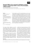 Báo cáo khoa học: Systemic RNAi of the cockroach vitellogenin receptor results in a phenotype similar to that of the Drosophila yolkless mutant