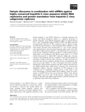 Báo cáo khoa học: Hairpin ribozymes in combination with siRNAs against highly conserved hepatitis C virus sequence inhibit RNA replication and protein translation from hepatitis C virus subgenomic replicons