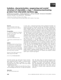 Báo cáo khoa học: Isolation, characterization, sequencing and crystal structure of charybdin, a type 1 ribosome-inactivating protein from Charybdis maritima agg.