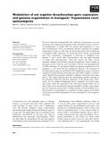 Báo cáo khoa học: Modulation of oat arginine decarboxylase gene expression and genome organization in transgenic Trypanosoma cruzi epimastigotes