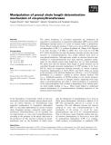 Báo cáo khoa học: Manipulation of prenyl chain length determination mechanism of cis-prenyltransferases