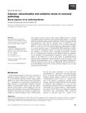 Báo cáo khoa học:  Calcium, mitochondria and oxidative stress in neuronal pathology Novel aspects of an enduring theme