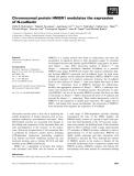 Báo cáo khoa học: Chromosomal protein HMGN1 modulates the expression of N-cadherin