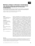 Báo cáo khoa học: Methylene analogues of adenosine 5¢-tetraphosphate Their chemical synthesis and recognition by human and plant mononucleoside tetraphosphatases and dinucleoside tetraphosphatases