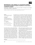 Báo cáo khoa học: Identification of the epitope of a monoclonal antibody that disrupts binding of human transferrin to the human transferrin receptor