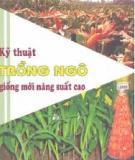 Kỹ thuật trồng ngô giống mới năng suất cao - NXB Lao động xã hội