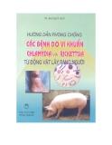 Hướng dẫn phòng chống các bệnh do vi khuẩn chlamydia từ động vật lây sang người