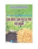 Nâng cao chất lượng và giá trị xuất khẩu của điều, chè và cà phê Việt Nam