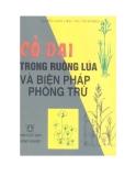 Ebook Cỏ dại trong ruộng lúa và biện pháp phòng trừ - Nguyễn Mạnh Chính, Mai Thành Phụng