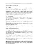 Phần 12  Kết cấu vùi và áo hầm