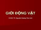 Giới động vật - GV: TS. Nguyễn Dương Tâm Anh