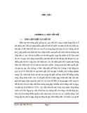 BÁO CÁO ĐỀ TÀI NGHIÊN CỨU TÁC HẠI CỦA VIỆC GIẾT MỔ GIA SÚC GIA CẦM THỦ CÔNG TỰ PHÁT TRÊN ĐỊA BÀN THÀNH PHỐ  HỒ CHÍ MINH