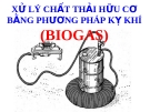 Xử lý chất thải hữu cơ bằng phương pháp kỵ khí (Biogas)