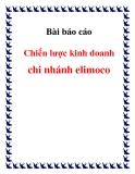 Luận văn đề tài : chiến lược kinh doanh  chi nhánh elimoco