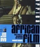African Cinema in the Nineties