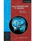 Book From Molecules To Minds