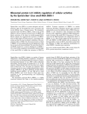 Báo cáo khoa học: Ribosomal protein L22 inhibits regulation of cellular activities by the Epstein-Barr virus small RNA EBER-1