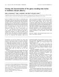 Báo cáo khoa học: Cloning and characterization of the genes encoding toxic lectins in mistletoe (Viscum album L)