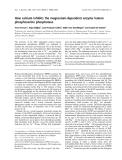 Báo cáo khóa học: How calcium inhibits the magnesium-dependent enzyme human phosphoserine phosphatase
