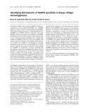Báo cáo khoa học: Identifying determinants of NADPH specificity in Baeyer–Villiger monooxygenases