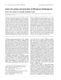Báo cáo khóa học: Active site residues and mechanism of UDP-glucose dehydrogenase