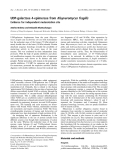 Báo cáo khóa học: UDP-galactose 4-epimerase from Kluyveromyces fragilis Evidence for independent mutarotation site