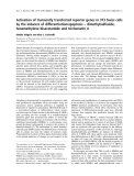 Báo cáo khoa học: Activation of transiently transfected reporter genes in 3T3 Swiss cells by the inducers of differentiation/apoptosis – dimethylsulfoxide, hexamethylene bisacetamide and trichostatin A