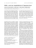 Báo cáo khóa học: TbPDE1, a novel class I phosphodiesterase of Trypanosoma brucei