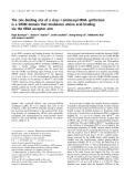 Báo cáo khóa học:  The zinc-binding site of a class I aminoacyl-tRNA synthetase is a SWIM domain that modulates amino acid binding via the tRNA acceptor arm