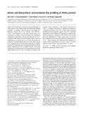 Báo cáo khoa học: Amino acid biosynthesis and metabolic flux profiling of Pichia pastoris