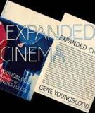 A Qualitative Study of Avid Cinema-goers : UK Film Council