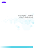 Avid Digital Cinema Camera Workflows