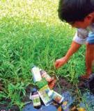 Thuốc bảo vệ thực vật và hóa chất