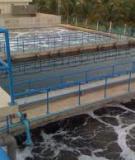ứng dụng vi sinh vật xử lý môi trường